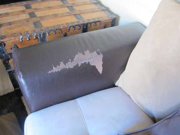 Herculodge Never Buy A Couch With Imitation Leather It Peels